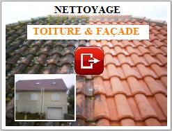 Entreprise de démoussage toiture Laval (53) Mayenne